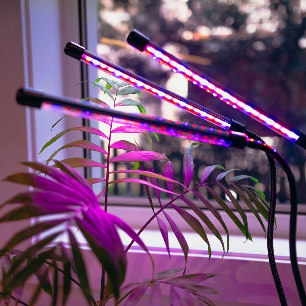 artificial lights help in plant growth